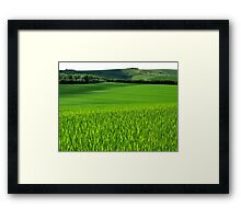 Fields of Green Framed Print