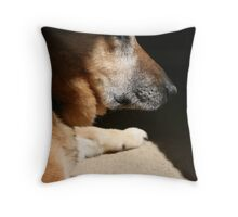 The Family Dog Throw Pillow