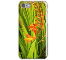 Epic Nature iPhone Case/Skin