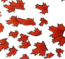 Maple Leaves by Nicoletta37