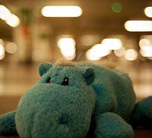 hippo in the parking... by Ricardo Mendonça