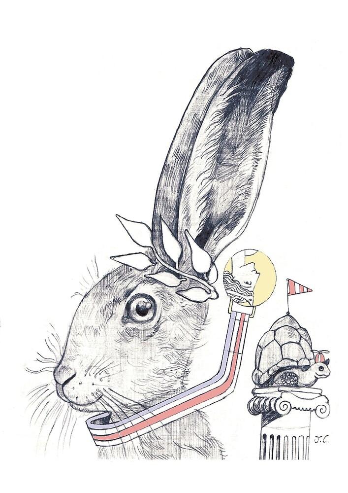 hare and tortoise by johnchamberlain redbubble
