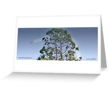 Unusual View - Silver Falcons Greeting Card