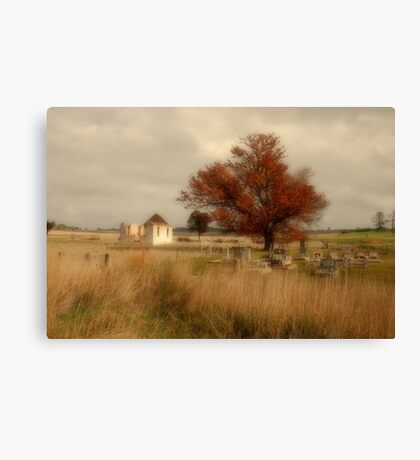Roadside, Federal Highway, ACT Canvas Print