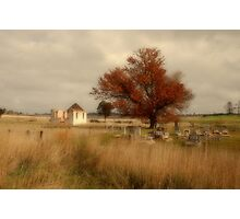 Roadside, Federal Highway, ACT Photographic Print