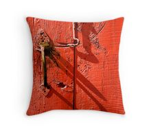Old door Throw Pillow