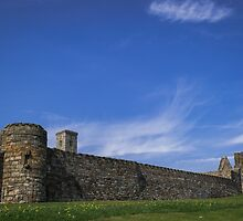 Medieval Wall by Errne