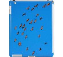 Floating on a Red Carpet iPad Case/Skin