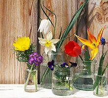 Spring flowers display on a wooden background by tanyaemsh