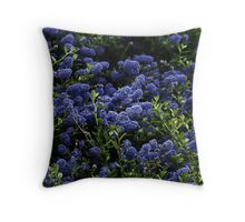 Ceonothis Throw Pillow