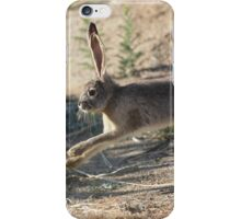 Jack the Rabbit iPhone Case/Skin