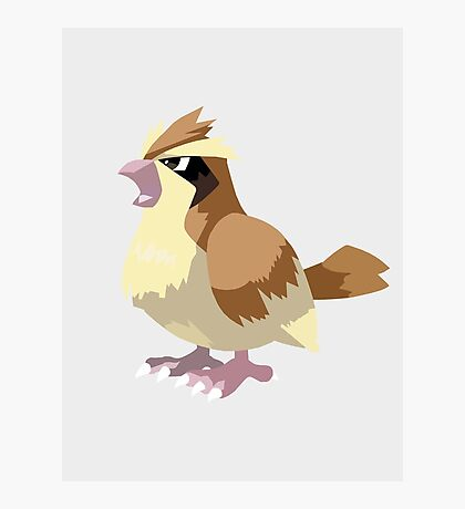 Pidgey Pokemon Simple No Borders Photographic Print