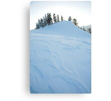 icy windblown ridge , Diamond Head Area, British Columbia , Canada Canvas Print