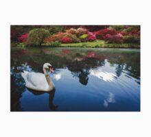 Swan Lake Baby Tee