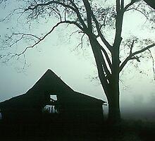 Foggy Barn by WTBird