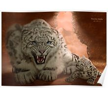 Snow Leopard - 'Protective Mother' Poster