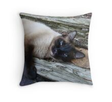 SUSHI IN THE CATS' CRADLE Throw Pillow