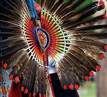 Native Feathers by dmvphotos