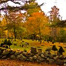 West Part Cemetery by Linda Gregory