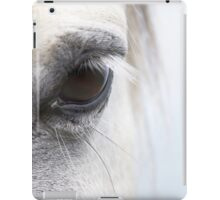 White Horse at Dawn 02 iPad Case/Skin