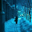 Winter Walk by Chet  King