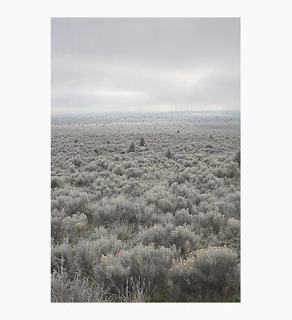 Sagebrush Sea , Oregon , United States of America   Photographic Print