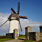 Skerries Windmill by Finbarr Reilly