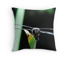 DRAGONFLY FRONTAL Throw Pillow