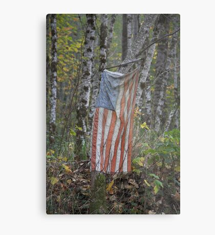 patriotism , Washington State Metal Print