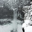 winter, Brandywine Falls , British Columbia by Christopher Barton