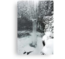 winter, Brandywine Falls , British Columbia Canvas Print