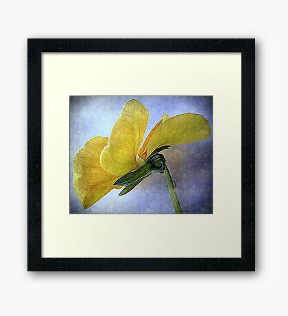 closeup flora  Framed Print