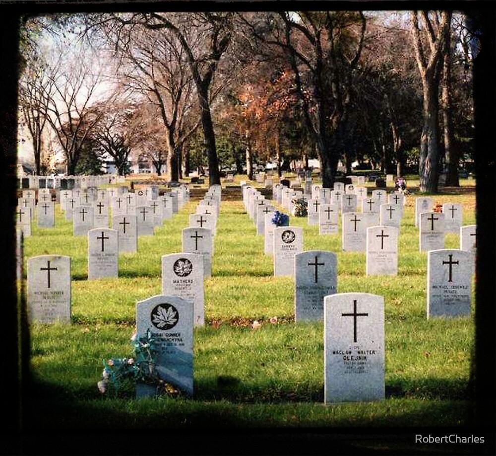 Cemetery by RobertCharles