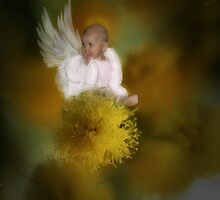 The Wattle Flower Angel by StarKatz