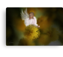 The Wattle Flower Angel Canvas Print