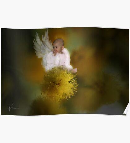 The Wattle Flower Angel Poster
