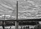 Penobscot Narrows Bridge by Caleb Ward