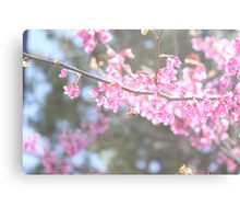 Blooms & Bees Canvas Print