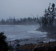 Winter Fog by Paul McKinnon