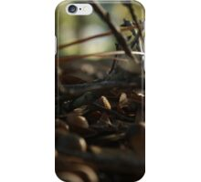 Sticks and Acorns iPhone Case/Skin