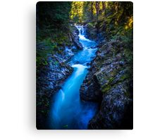 Little Qualicum Falls Canvas Print