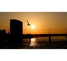 Gliding On The Skyline Photographic Print
