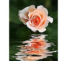 Peach Ripple Photographic Print
