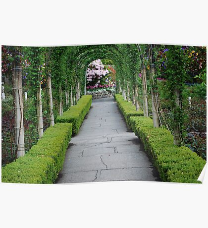 An Elegant Arched Walkway in Butchart Gardens Poster