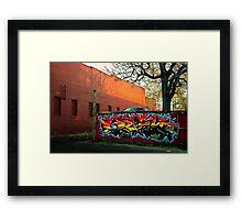 Splash of Color Framed Print