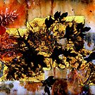 Black on Gold Leaf by Dana Roper