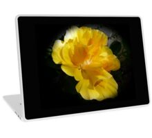 Beautiful double yellow hibiscus on black Laptop Skin