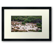 Wallaby habitat Framed Print