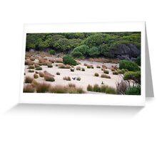 Wallaby habitat Greeting Card