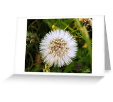 Just Dandy Greeting Card